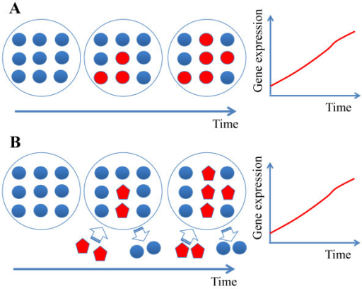 Changes in cell demographics can result in gene expression. Two scenarios which result in similar gene expression changes: (A) The cell type(s) within the sample are unchanged, but, over time, inactivated cells (colored blue) become activated and express a marker gene (colored red); (B) A second cell type already actively expressing the marker gene (red colored pentagons) migrates into the sample. The change in the marker gene expression is similar in both cases but results from a different reason.