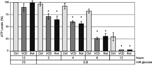 Inhibition of ATP synthesis by VCD.Intracellular levels of ATP were determined after incubation of cells under various culture conditions. Cells were exposed to 100 nM VCD or 100 nM rotenone in the presence of 0.8 or 25 mM glucose for up to 12 h. Ctrl: control for the respective time point in the absence of drug treatment. Asterisks: p<0.05 (treated compared to untreated cells at the same time point).