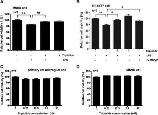 Triptolide protects neuronal cells from the toxicity of LPS-stimulated microglia-conditioned medium. (A) Triptolide attenuated the toxicity of conditioned medium from LPS-stimulated microglia to MN9D cells. MN9D cells treated with conditioned medium from LPS-unstimulated microglia, LPS-stimulated microglia with or without triptolide (50 nM), as well as triptolide alone (50 nM) treated microglia for 24 h. Cell viability was assessed by MTS assay. (B) Triptolide attenuated the toxicity of conditioned medium from LPS-stimulated microglia to SH-SY5Y cells. SH-SY5Y cells treated with conditioned medium from LPS-unstimulated microglia, LPS-stimulated microglia with or without triptolide (50 nM), triptolide alone (50 nM) treated microglia, as well as LPS-stimulated microglia with FeTMPyP (10 μM) for 72 h. Cell viability was assessed by MTS assay. (C) Triptolide did not change primary rat microglial cell viability. Primary rat microglial cells were treated with triptolide (0, 6.25, 12.5, 25, 50 nM) for 24 h. Cell viability was assessed by MTS assay. (D) Triptolide did not change MN9D cell viability. MN9D cells were treated with triptolide (0, 6.25, 12.5, 25, 50 nM) for 24 h. Cell viability was assessed by MTS assay. **P < 0.01. #P < 0.05 and ##P < 0.01.