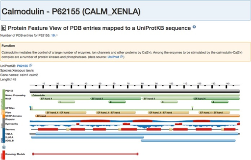 Protein feature view for Calmodulin. The main reference (gray track) is the full-length sequence from UniProt. The top of the view (green) provides a summary of important functional motifs plus UniProt sites. By moving the mouse over any of these regions, more information about this region can be viewed. This is followed by annotations from Pfam (yellow), SCOP domain annotations (orange), computationally inferred information, such as protein disorder score or hydropathy. At the bottom, in blue, are the data derived from PDB. A secondary-structure track shows helical and strand regions along the protein. In the 'condensed' (default) view representative protein chains are being displayed mapped to the protein sequence. To view the mapping of all available PDB chains the 'expanded' view can be called by pressing the '+' button.