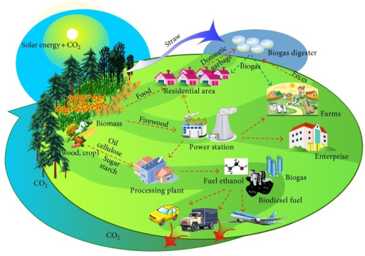 Diagram of energy agriculture concepts and characteristics.