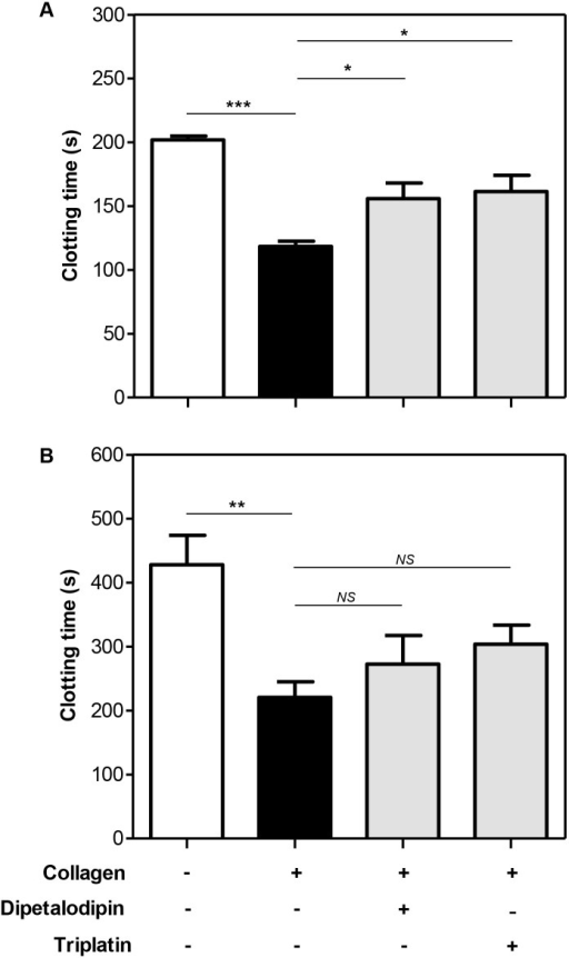 Dipetalodipin and triplatin abolish the collagen-mediated acceleration of PRP clotting.Human citrated-anticoagulated (A) PRP or (B) PPP supplemented with PC/PS was pretreated with dipetalodipin (1 μM) or triplatin (2 μM). Preparations were then incubated with collagen (50 μg/ml, final concentration) or vehicle solvent (control) and activated with 16.6 mM CaCl2. Mean ± SEM (n = 5); *P < .05; **P < .01; ***P < .001; NS, non-significant; analysis of variance (ANOVA) with Tukey's posttest.