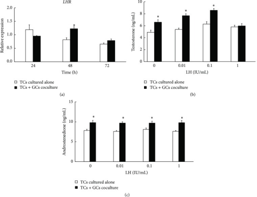 (a) Effect of granulosa cells on mRNA expression of LHR in TCs cells and LH stimulation of androgen production in TCs in the cocultured model. The LHR mRNA expression of TCs in cocultured model increased significantly at 48 h but manifested no difference compared with TCs cultured alone at 24 h and 72 h (GAPDH as internal control). (b) Effect of GCs on testosterone production responded to LH in TCs cells after being cocultured for 48 h. Testosterone production significantly increased in response to low concentrations of LH (0–0.1 IU/mL) in the cocultured model but no increase was observed at high concentration (1 IU/mL). (c) Effect of GCs on androstenedione production responded to LH in TCs cells after being cocultured for 48 h. Androstenedione production significantly increased in response to different concentrations of LH (0-1 IU/mL) in the cocultured model. Data were expressed as mean ± SEM of three independent experiments. The asterisk showed the statistically significant difference.   ∗P < 0.05.