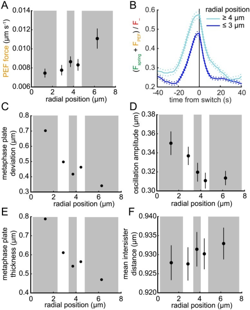 PEF variation over the metaphase plate impacts oscillation amplitude and deviation from alignment.(A) Average absolute PEF (on sister 1) binned by distance r from the centre of the metaphase plate (bins of approximately equal number; alternating grey and white boxes). (B) Average profile of the proportion of the opposing force (spring + PEF) to F− on lead sister during a LIDS for trajectories with r ≥ 4 μm (cyan) and r ≤ 3 μm (blue). Switch events aligned as described under Fig 8. Solid and dashed lines indicate mean and ±s.e.m., respectively. (C-F) Trajectories binned by distance r as in (A) with bin mean of (C) alignment deviation; (D) oscillation amplitude; (E) metaphase plate thickness; (F) inter-sister distance shown. Lines in (D,F) indicate s.d., n = 843, see text for definitions.