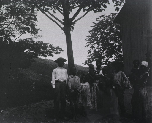 <p>View of refugees standing under a tree.</p>