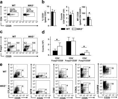 Cell count and immunophenotype of nTreg cells in the spleens of WAS−/− mice. (a) Immunophenotype of CD4+ splenocytes from representative WT and WAS−/− mice. Numbers indicate the percentages and MFI of CD25+ cells. (b) Percentage, absolute count, and MFI of CD25+ cells among CD4+ splenocytes. Mean ± SD of 13 mice per group is shown. *, P < 0.05, Student's t test. (c) Foxp3 and CD25 expression in CD4+ splenocytes. Numbers indicate the percentage of cells in the respective region. (d) Absolute count of the indicated splenocyte populations. Mean ± SD of 13 mice per group is shown. *, P < 0.05, Student's t test. (e) Immunophenotype of nTreg cells from WT and WAS−/− mice. Expression of CD25 is shown together with the expression of CTLA-4, GITR, CD69, CD62L, and CD45RB. Negative control staining resulted in signal below the value of 10. Numbers indicate the percentages of cells in the respective regions. Data are representative of six to eight mice per group analyzed in two independent experiments.