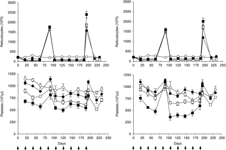 Reticulocyte and platelet profiles in female (left) and male rats (right) after intravenous administration of vehicle (○), 0.1 (•), 1.0 (□) or 10 (▪) mg Hematide/kg every 3 weeks for 10 administrations followed by a 6-week recovery. Data are represented as mean values ± standard deviation. Arrows denote days of administration. For 0 through 1 mg/kg, 8 to 10 rats were sampled per dose per time-point through Days 188, Day 195 represented 18–20 animals while the remaining time-points represented 4–5 animals. Five to 10 rats were sampled per dose group for each time-point for the 10 mg/kg group. Results show a synchronicity with dosing; when sampling times occurred soon after dosing (Days 90 and 195/196, 5 days after administration) elevations in parameters are observed.