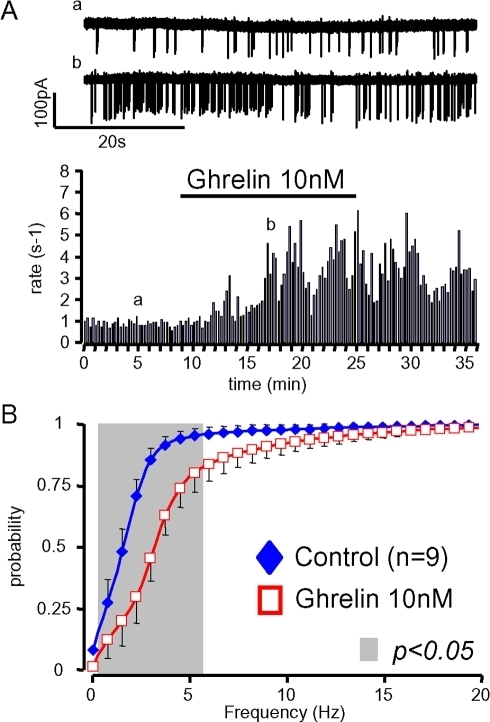 Ghrelin enhances the firing rates of GHRH neurons in the absence of somatostatin.A, typical experiment where 10 nM ghrelin increased the firing rate of a GHRH neuron from an adult male somatostatin −/−, GHRH-GFP mouse (raw traces are shown on the top). B, summary of the effects of ghrelin (10 nM) on the distributions of action potential frequencies in GHRH neurons from adult male somatostatin −/−, GHRH-GFP mice. Symbols and lines are the means and the sem of the numbers of experiments indicated. Statistical significances (p<0.05, paired student-t test, see methods) between curves are framed by the grey area.