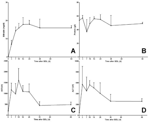 Serum markers of cholestasis and hepatocellular injury during bile duct ligation. Biochemical markers are shown for (A) bilirubin, (B) total protein, (C) alanine aminotransferase and (D) aspartate transaminase.