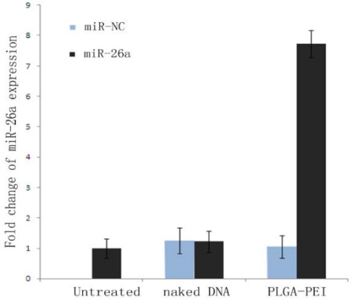 Relative expression change of miR-26a level. (1) Untransfected group; (2) naked DNA group; (3) PLGA/PEI transfected group. P < 0.05 compared with groups naked DNA and PLGA/PEI nanoparticles.