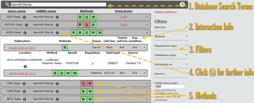 Screen-shot depicting the DIANA-TarBase v7.0 interface. Users can enter the query terms in the simple search box (1). Interaction information is presented below (2), while further details are accessible by expanding the result panel or by selecting the information links (4). All results are color-coded, with green and red showing positive and negative experimental outcomes, respectively (5). Mixed results are presented using both colors. Users can filter the query results using any combination of the filtering options (3).