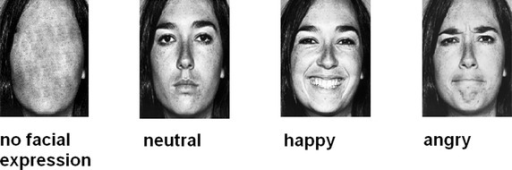 Examples of faces presented in the four prime conditions—happy, angry, neutral, and no facial expression. Faces were accessed from the Pictures of Facial Affect database provided by Ekman and Friesen [30].