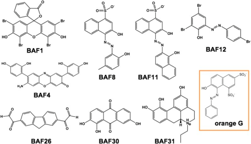 Diversified chemical structures of 8 active BAF compounds that reduce Aβ toxicity.Orange G in an orange box is also displayed for comparison.DOI:http://dx.doi.org/10.7554/eLife.00857.017