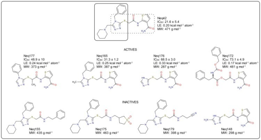 Molecular structure and cruzain inhibition of compound Neq42 analogs selected for SAR investigation.Molecules drawing and figure generated with MarvinSketch software (www.chemaxon.com).