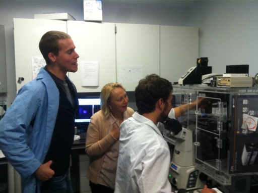 Scanning angle interference microscopy reveals impact of tissue mechanics on integrin adhesion organization. Joint University of California, San Francisco/Berkeley Bioengineering graduate students Luke Cassereau (left) and Matthew Rubashkin (right) and Valerie Weaver conduct supraresolution imaging studies using scanning angle interference microscopy to explore the interplay between integrin adhesions and tissue mechanics in metastatic breast cancer cells.