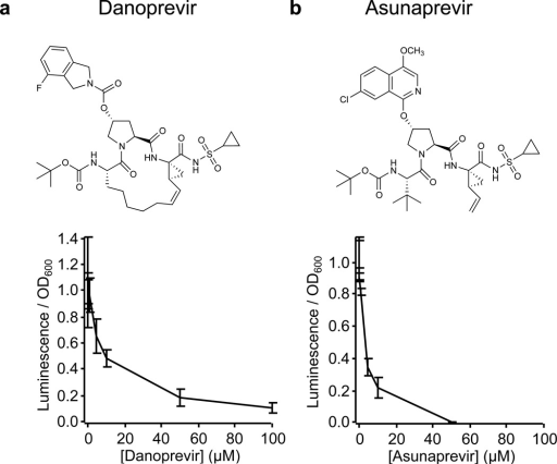 HCV PA-RNAP response to protease inhibitors in E. coli cellsHost cells expressing the HCV PA-RNAP were incubated with HCV protease inhibitors danoprevir (a) or asunaprevir (b) for 90 min, followed by inoculation with HCV protease encoding phage. After 3 h, luminescence assays were used to quantify relative gene activation resulting from the PA-RNAP. Luminescence experiments were performed in triplicate with error bars depicting the standard deviation.