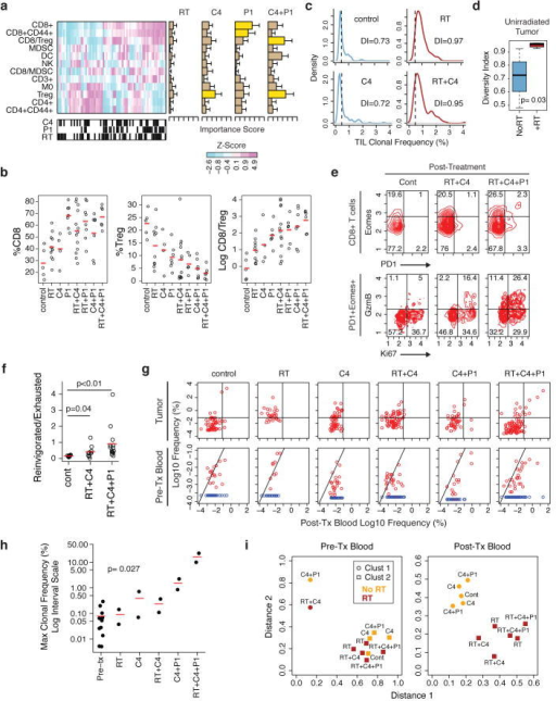 RT, anti-CTLA4, and anti-PD-L1 have distinct effects on the TCR repertoire, Tregs, and T cell exhaustiona) Heat map of changes in the frequency of immune cells or their ratios from B16-F10 tumors. Black hatches indicate treatment. Bar plots show bootstrap importance scores (mean +/− SE) that assess changes in immune parameters predicted by treatment type (read row-wise). Higher values (yellow) represent stronger association. b) T cell subsets and their ratios. c) Frequency distribution (dashed line is 0.5%) and d) boxplot of diversity index (0: clonal, 1: fully diverse) for most frequent TCR clonotypes found in TILs of unirradiated B16-F10 tumors after RT and/or anti-CTLA4. Boxplot summarizes data for mice treated with anti-CTLA4 (NoRT) or RT +/− anti-CTLA4 (+RT). e) Representative contour plots and f) ratios examining PD-1+Eomes+ splenic CD8 T cells from mice with B16-F10 tumors for Ki67+GzmB+ (reinvigorated) or Ki67−GzmB− (exhausted) subsets. g) TCR clonal frequency in post-treatment blood vs. TILs (top row) or vs. pre-treatment blood (bottom row). Quadrant boundaries are top 5% quantiles from the control. Clones below detection in pre-treatment blood are assigned upper bounds (blue). h) Maximum clonal frequency in post-treatment blood (dot) of the most frequent TCR clonotypes found in TILs. i) Distances to cluster centroids for the average CDR3 amino acid features of the five most frequent clones in pre- or post-treatment blood from mice treated with (red) or without (orange) RT. Membership into two clusters (circles and squares) determined by k-means.