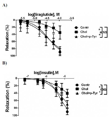 Liraglutide-induced (panel A) and insulin-induced (Panel B) relaxation relaxation of the thoracic aorta of control rats (Contr), cholesterol-fed rats without p-Tyr supplementation (Chol) and cholesterol-fed rats with p-Tyr supplementation (Chol+p-Tyr). *: p<0.05. Reproduced with permission of Bentham Science Publishers from Selley et al. Protein and Peptide Letters 2015; 22(8): 736-742 [84].