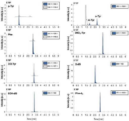 Typical chromatograms of the selected biomarkers extracted from the analysis of spiked urine sample. Note: Spiking concentrations were 73 nmol/L for 8OHdG and m-Tyr, 182 nmol/L for 2-dG, o-Tyr, 3NO2-Tyr and 3Cl-Tyr and 23 mM for p-Tyr and Phe. Image from Kuligowski et al. PloS One 2014, 9: e93703 [48], reproduced under the creative commons license.