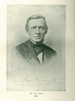 <p>Image of Dr. Asa Gray (1810-1888) from More letters of Charles Darwin, vol. 2, opposite p. 455. Botanist and professor of natural history at Harvard College.</p>