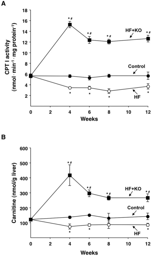 Effect of KO on hepatic fatty acid oxidation.(A) CPT I activity was measured in liver mitochondria freshly isolated from rats at the times indicated. The values are expressed as nanomoles of DTNB reduced min−1·mg protein−1 and were calculated as described in the Methods section. (B) Liver carnitine levels were also determined at the times indicated. Data are means ± SD (n = 4). *P<0.05 vs. rats fed control diet; #P<0.05 vs. rats fed HF diet.