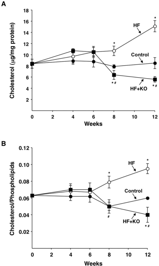 Effect of KO on cholesterol and phospholipid contents in liver mitochondria.The levels of liver cholesterol (A) and cholesterol/phospholipids ratio (B) were determined at the times indicated. Each point represents the mean ± SD (n = 3). *P<0.05 vs. rats fed control diet; #P<0.05 vs. rats fed HF diet.