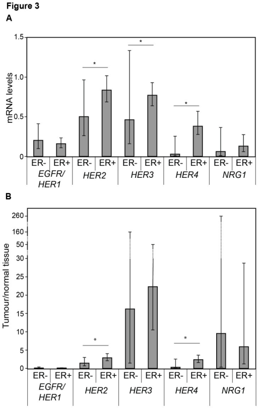 HER1-4 and NRG1 levels related to estrogen receptor status.Geometric mean with 95% confidence intervals of the HER-receptors and NRG1 in estrogen receptor positive (ER+) and ER negative (-) tumours (A) and intervals of tumour to normal tissue ratio (B) among all patients with HER2 non-amplified disease. Significant differences between ER+ and ER- tumours are presented using the Mann-Whitney U test.