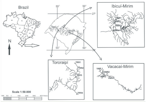 Map showing the locations of the Vacacaí-Mirim, Ibicuí-Mirim, and Tororaipí river microbasins, Rio Grande do Sul, Brazil. High quality figures are available online.