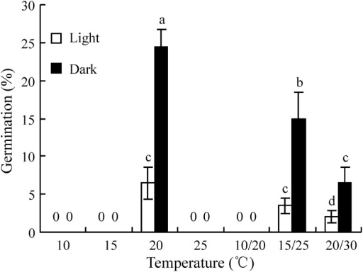 Effect of temperature on germination of fresh seeds of Stipa bungeana in a 12 h/12 h photoperiod and in dark.Different letters indicate significant difference (P<0.05) among all treatments (n = 4).