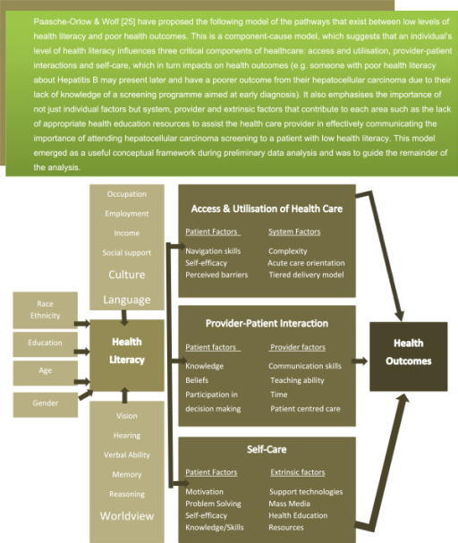Adapted version of Paasche-Orlow & Wolf's model of the pathways linking health literacy and health outcomes[25].