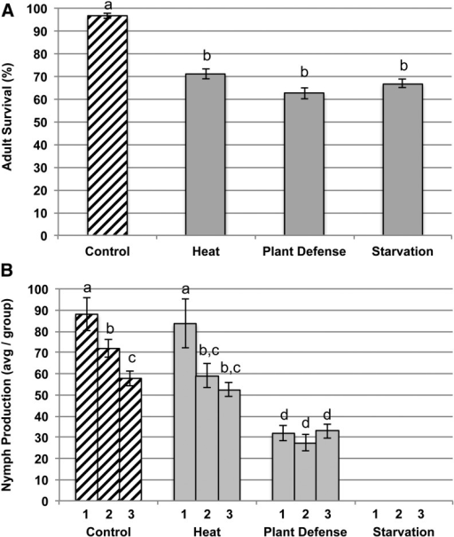 Adult survival and reproduction over 36 hr in A. glycines exposed to control conditions and three stressors (plant defense, starvation, and heat). (A) Adult survival averaged across the three experimental blocks. (B) Average nymph production is shown for each separate block due to significant variation across blocks (1, 2, 3) and environments. Letters indicate significant differences in survival and reproductive output (P < 0.05).