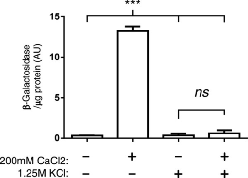 Calcineurin-activated gene expression is inhibited during hyperosmotic shock. Ca2+/CN–dependent Crz1 transcription was measured with a CDRE-LacZ reporter. β-Galactosidase activity normalized to protein concentration is reported. Cells were treated for 90 min with 200 mM CaCl2 and/or 1.25 M KCl as indicated. Error bars are SD; ***p < 0.001.