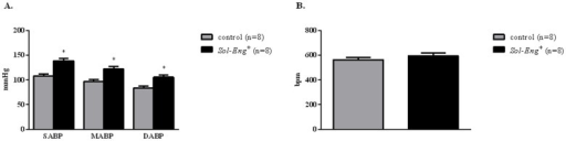 Blood pressure (A) and heart rate (B) in Sol-Eng+ and control male mice assessed by telemetry.SABP: Systolic arterial blood pressure; DABP: Diastolic arterial blood pressure; MABP: mean arterial blood pressure. Data are shown as mean ± S.E.M. ANOVA and unpaired t-test with respect to control mice, *p≤0.01.