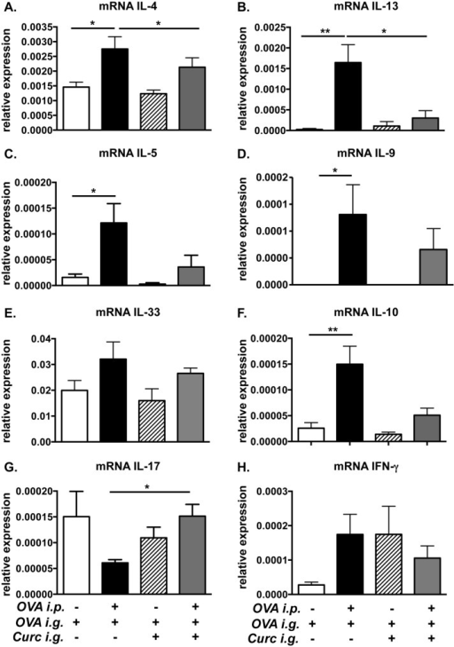 Treatment with curcumin inhibits the expression of intestinal Th2 cytokines in allergic mice.Mice were fed with OVA and curcumin as depicted in Fig 1A. (A-H) Expression of jejunal mRNA for various cytokines is shown. Data are representative of 2 independent experiments. * = p<0.05; ** = p<0.01.