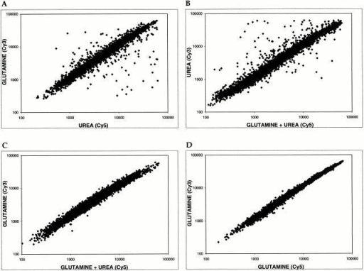Glutamine is both a global activator and repressor of gene expression. Scatter plots show pairwise comparisons of gene expression profiles of S288c cells grown in the presence of glutamine, urea, or glutamine + urea. (A) MD-glutamine versus MD-urea. (B) MD-urea versus MD-glutamine + urea. (C) MD-glutamine versus MD-glutamine + urea. (D) Control experiment comparing MD-glutamine with itself. For each plot, the x axis depicts cDNA samples labeled with Cy5 dye and the y axis depicts samples labeled with Cy3 dye.