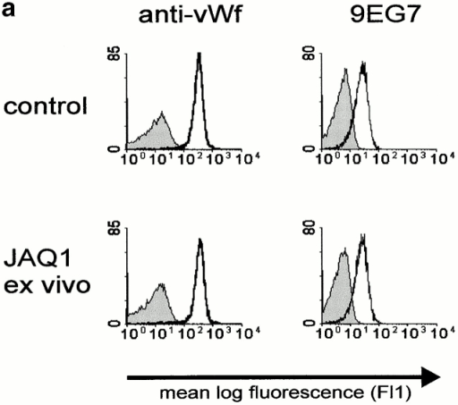 Reduced adhesion to collagen and abolished procoagulant response of GPVI-depleted platelets. (a) Platelets from JAQ1-treated mice (day 7) bind normal amounts of plasma vWF in the presence of botrocetin (2 μg/ml; solid line). Bound vWF was detected by FITC-labeled anti-vWF Abs (10 μg/ml). No binding was detected in the absence of botrocetin (shaded area). Normal activation of β1-integrins on platelets from JAQ1-treated mice in response to thrombin (0.1 U/ml). Resting (shaded area) or thrombin activated (solid line) platelets were incubated with FITC-labeled 9EG7 (5 μg/ml) for 15 min at RT and analyzed directly. (b) Washed platelets from control or JAQ1-treated mice (day 7) were incubated in collagen-coated microtiter plates in the presence or absence of MgCl2 (1 mM)/CaCl2 (1 mM) for the indicated times and adherent platelets were quantitated fluorimetrically. The data shown are from a single experiment, representative of five identical experiments and expressed as the mean of triplicate readings ± SD. (c) Flow cytometric analysis of annexin V-FITC binding to platelets from control and JAQ1-treated (day 7) mice activated with a combination of collagen (50 μg/ml) and thrombin (0.01 U/ml).