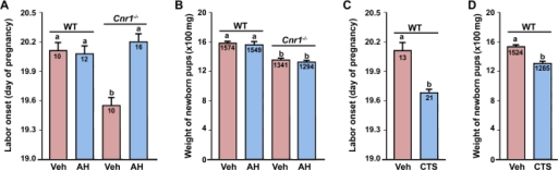 Pharmacological silencing of CRH activities by Antalarmin hydrochloride (AH) on days 15–17 restores normal labor in Cnr1−/− mice with little effects on fetal birth weights (A & B), while enhanced corticosterone (CTS) activity on days 14–18 induces preterm birth with impaired fetal growth in wild-type (WT) mice (C & D).Numbers within bars indicate the number of mice examined in panels A and C. The average fetal weights (mg) are shown in panels B and D. The bars with different letters are significantly different (P<0.01).
