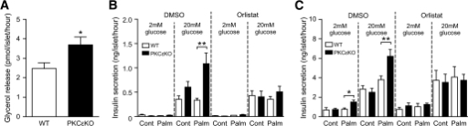 Enhanced lipolysis is required for enhanced secretion in PKCεKO islets. Islets isolated from 12-week-old male mice were cultured for 48–72 h in the presence of 0.4 mmol/l palmitate coupled to 0.92% BSA (Palm) or BSA alone (Cont). A: Lipolysis was measured in islets, after palmitate culture, by detection of glycerol release in response to 20 mmol/l d-glucose (n = 7). B: GSIS in palmitate-cultured PKCεKO islets in the presence of the lipase inhibitor orlistat (0.2 mmol/l) or DMSO vehicle control (n = 9). C: Glucose-amplified insulin secretion measured under KATP channel–independent depolarizing conditions (25 mmol/l KCl and 100 μmol/l diazoxide) using palmitate-cultured PKCεKO islets in the presence of orlistat or DMSO control (n = 9). Data are the means ± SE. *P < 0.05; **P < 0.01. WT, wild type.