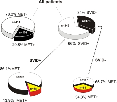 Pie chart comparison of metastatic and SVID patient groupings:This figure provides a summary of results on incidence of metastases in patients affected or not by small vessel ischemic disease. See text for details.