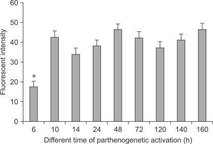 Comparison of Ca2+ fluorescence intensity in bovine parthenogenetic activation embryo at different times. p < 0.05 (*) indicates significant difference from other groups.