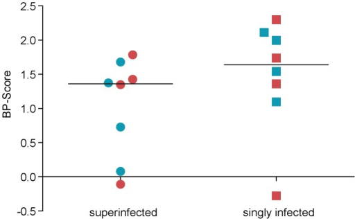 Mean change in B-P Scores in superinfected and singly infected study subjects.Circles and squares represent superinfected and singly infected samples, respectively. Horizontal lines indicate mean values. Red colour indicates the initial virus variants, whilst colour blue indicates the later virus variants.