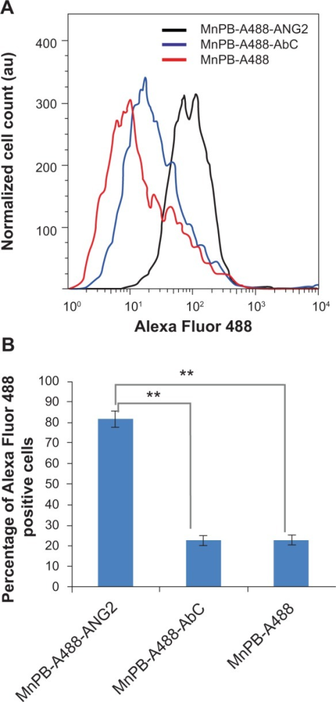 Flow cytometric analysis of the specificity of biofunctionalized MnPB nanoparticles for PBT cells.Notes: (A) Representative histograms of cell count plotted against Alexa Fluor 488 detection levels for BSG D10 cells treated with MnPB-A488 (no antibody, red line), MnPB-A488-AbC (blue line), and MnPB-A488-ANG2 (black line), and stained with 7-AAD. (B) Percentage Alexa Fluor 488-positive cells (fluorescence intensity cutoff 50) cells for BSG D10 treated with MnPB-A488-ANG2, MnPB-A488-AbC, or MnPB-A488. **P<0.05.Abbreviations: BSG, brainstem glioma; 7-AAD, 7-aminoactinomycin D; MnPB, manganese-containing Prussian blue; A488, avidin-Alexa Fluor 488; ANG2, anti-neuron-glial antigen 2; PBT, pediatric brain tumor; au, arbitrary units.