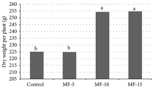 Pulsed electromagnetic field effect on dry weight per plant. Seeds have been exposed for 0, 5, 10, and 15 minutes in magnetic field. Means followed by the same letter for treatments are not significantly different according to the LSD 5% test. Control: untreated seeds; MF-5, MF-10, and MF-15: seeds treated with pulsed electromagnetic field for 5 min, 10 min, and 15 min, respectively.