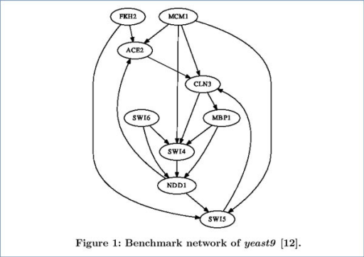 Benchmark network of yeast9. This benchmark network is from [12]. All edges were detected by biological experiments.