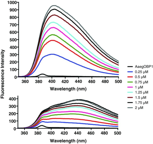 NPN fluorescence emission spectra obtained by titration at two pH values.Emission spectra at pH 5.5 (top traces) were considerably blue shifted relative to pH 7 (lower traces). Fluorescence intensity was also relatively higher at lower pH.