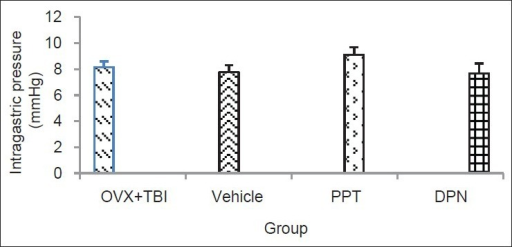 Intragastric pressure (mmHg) in different groups (n = 7 in each group) after traumatic brain injury. Data are presented as mean ± SEM. There was no significant difference between different groups. PPT: Estrogen receptor alpha agonist, DPN: Estrogen receptor beta agonist, SEM: Standard error of the mean