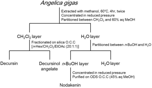 Isolation scheme for determining constituents of A. gigas with anti-inflammatory properties.
