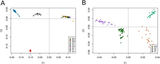 Multidimensional scaling analysis. When all breeds are simultaneously analyzed (a), the differences between European B. taurus (HOL), African B. taurus (NDA) and B. indicus breeds (PO, BRM, GIR and NEL) are well demonstrated. However, B. indicus breeds are poorly distinguishable due to ascertainment bias. The analysis of B. indicus breeds alone (b) resolves the relationships among BRM, GIR, NEL and PO cattle, highlighting a closer proximity between the later two. See Material and Methods for breed abbreviations