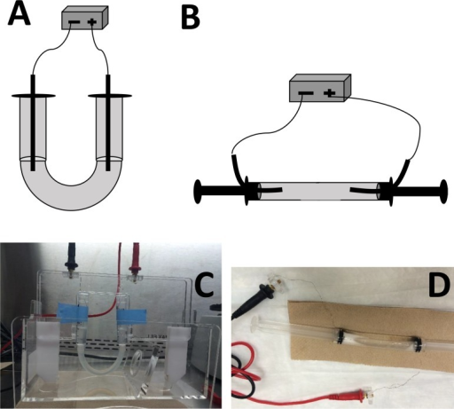 Devices used to investigate viral particles movement in electric field without the presence of membrane barrier.(A) illustration of the U-shape device; (B) illustration of the horizontal device; (C) actual picture of the U-shape device; (D) actual picture of the horizontal device.