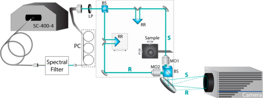 Quantitative Phase Spectroscopy system: (PC) polarization controller, (LP) linear polarizer, (BS) beam splitter, (RR) retroreflector mirror pair, (MO) microscope objective.Sample (S) and reference (R) beams are imaged by matched MOs onto the camera.